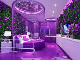 紫色浪漫 306