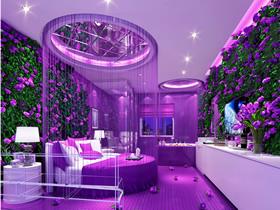 情迷紫罗兰 2109