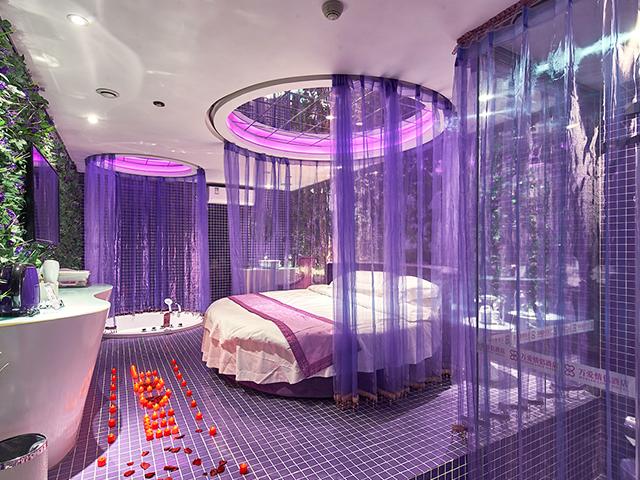 紫色梦幻 245