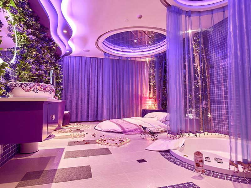 紫色浪漫 436